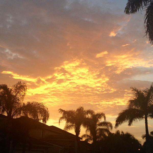 sunrise 4909